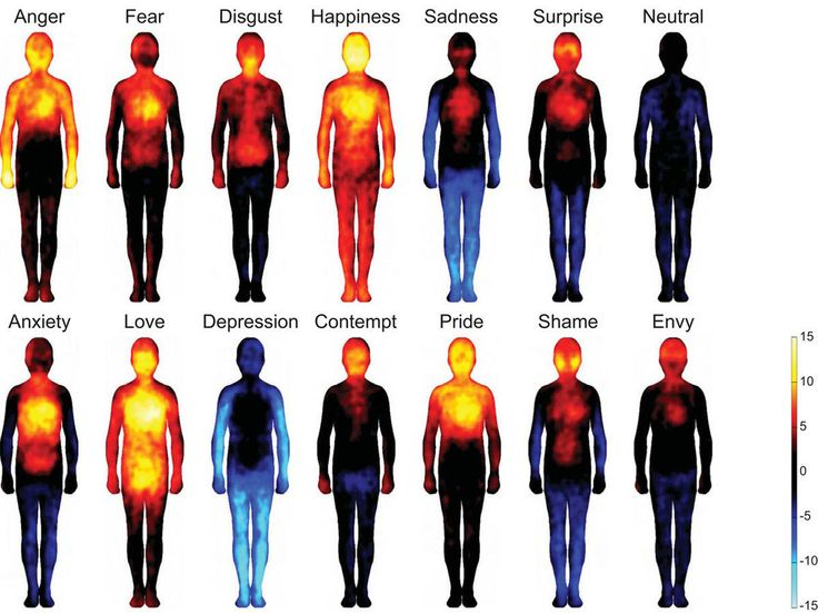 People drew maps of body locations where they feel basic emotions (top row) and more complex ones (bottom row).
