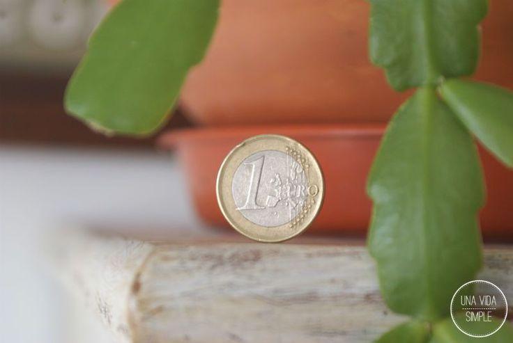 ¿Hace cuánto que no pasas unfin de semana sin gastar un euro? ¿Lo recuerdas? Ahora que estoy viviendo en un pueblo me estoy dando cuenta de la cantidad de dinero que se escurría de mi cartera cuan…