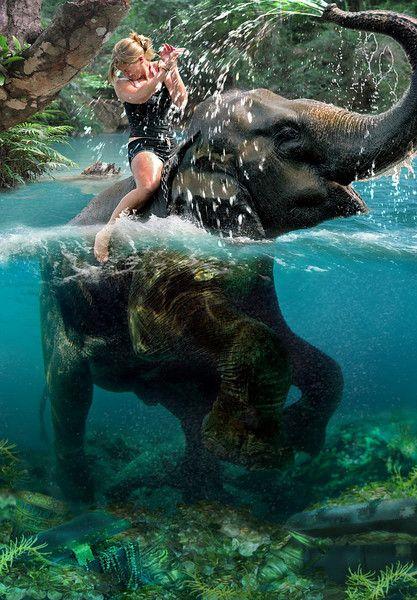 ride an elephant in water = bucketlist