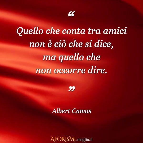 Quello che conta tra amici non è ciò che si dice, ma quello che non occorre dire. (Albert Camus)