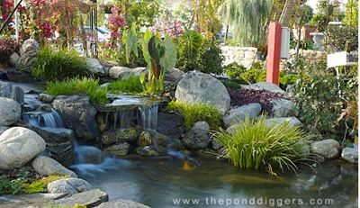 17 best images about aquaponics ideas on pinterest for Garden pond design and construction