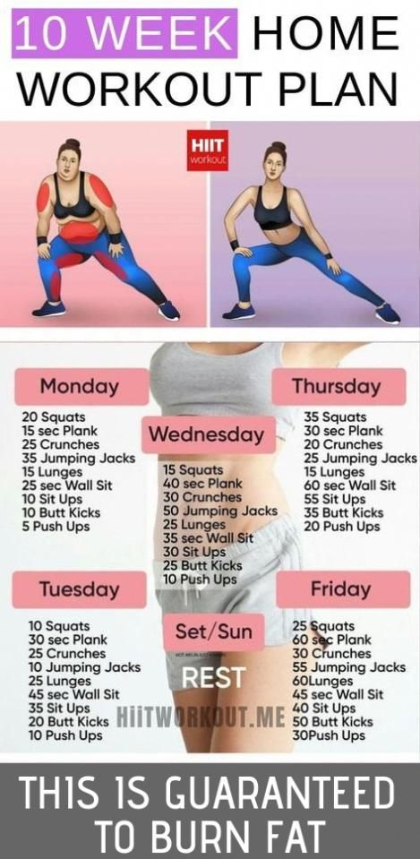 Routine Exercise Promotes The Weight Loss Process Promotes The