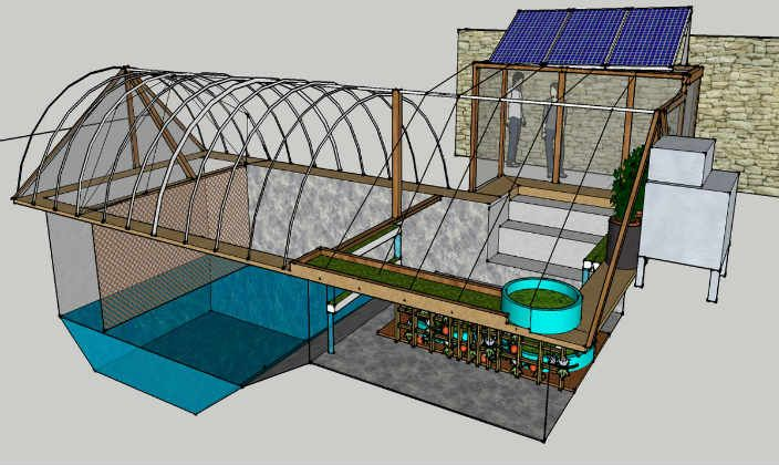 Swimming pool farms a sustainable revolution instead of for Dennis mcclung