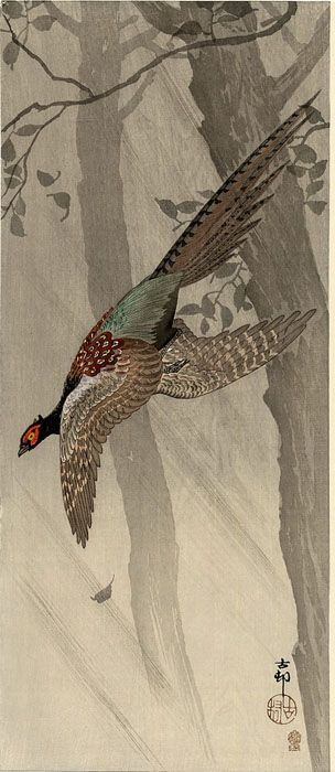 hanga gallery . . . torii gallery: Green Pheasant in Flight by Ohara Koson