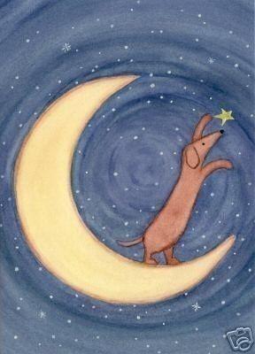 Perro salchicha marrón doxie en la luna alcanza una estrella