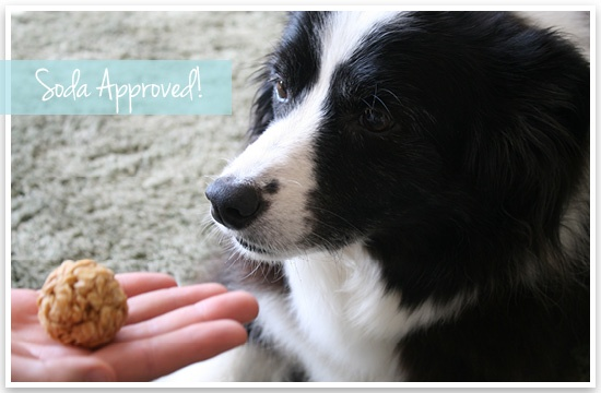 DIY: No Bake Healthy Treats for You & Your Pooch! | Pretty Fluffy