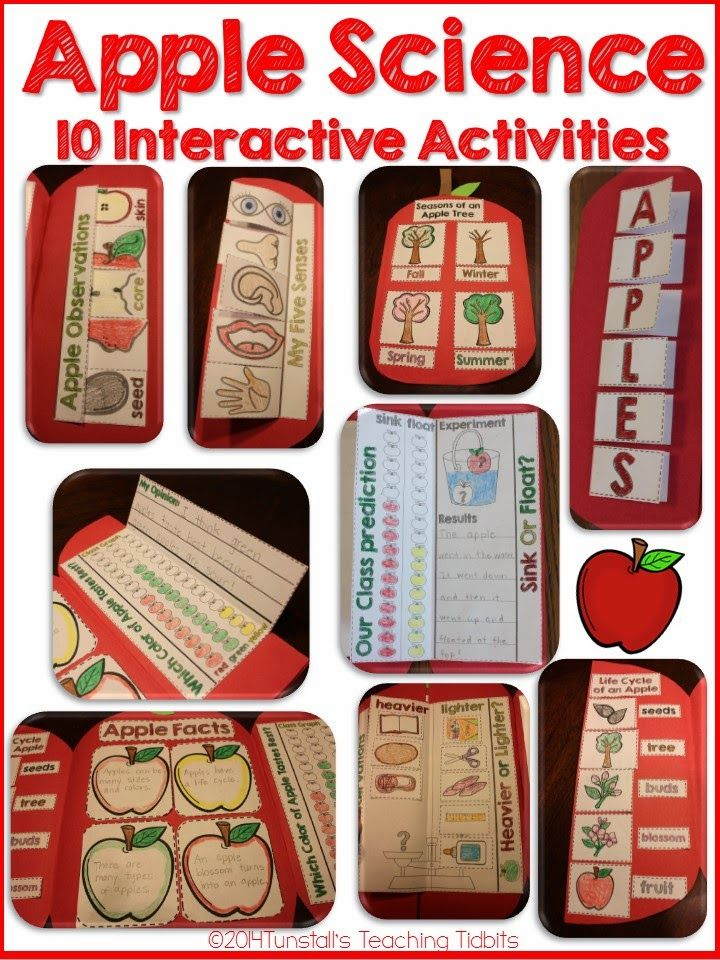 Apples! Hands-On Science - Tunstall's Teaching Tidbits