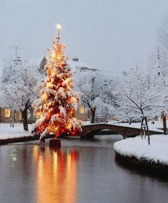 A snow-covered Christmas tree in a river in the middle of a picturesque Cotswold village with fairy lights reflecting on the water