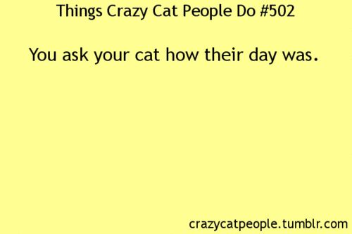 I had a cat who would TELL ME... of course, i had NO idea what he was saying, but i could at least tell if it had been a bad day for him or not!!  :D