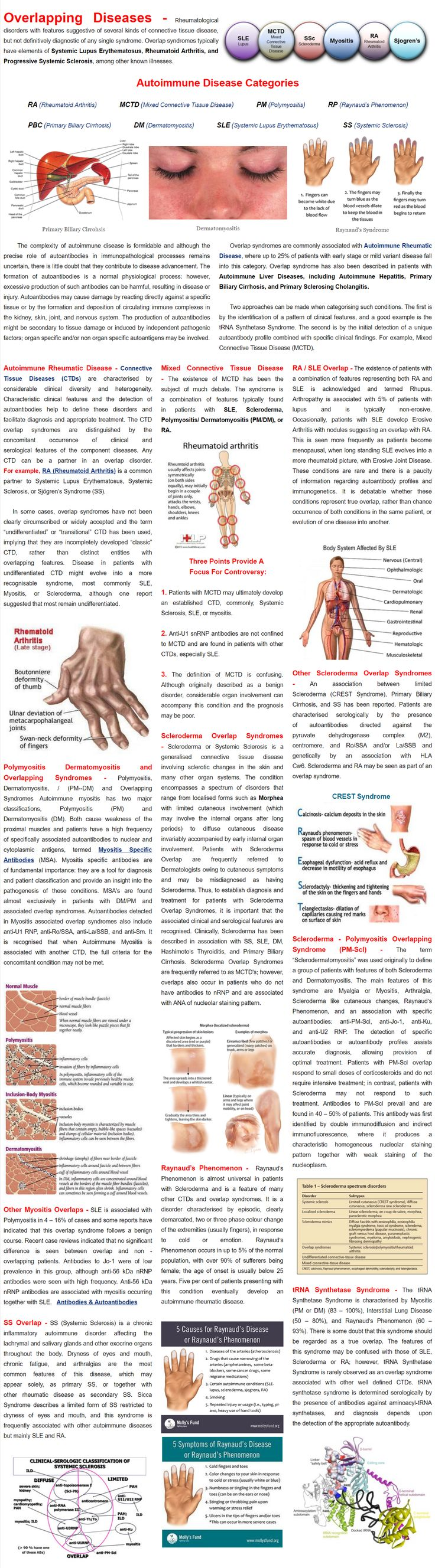 Rheumatological disorders with features suggestive of several kinds of connective tissue disease, but not definitively diagnostic of any single syndrome. Overlap syndromes typically have elements of Systemic Lupus Erythematosus, Rheumatoid Arthritis, and Progressive Systemic Sclerosis, among other known illnesses.