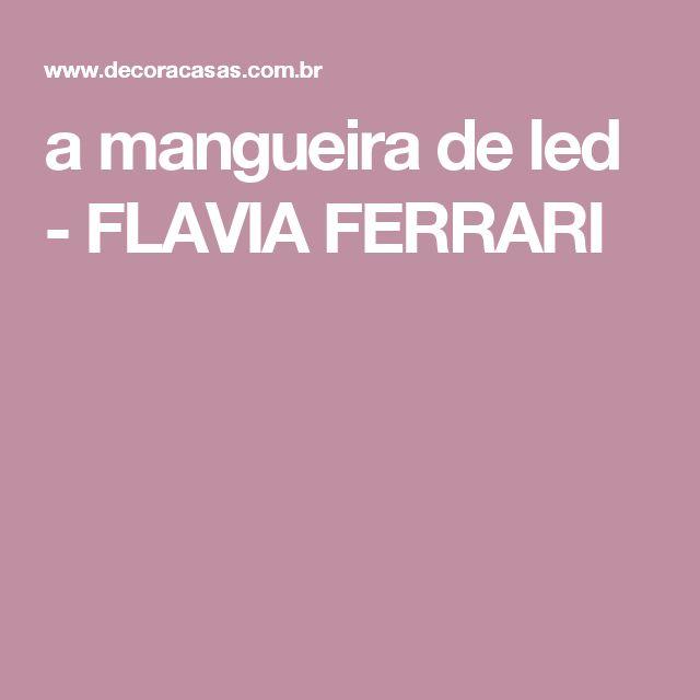 a mangueira de led - FLAVIA FERRARI