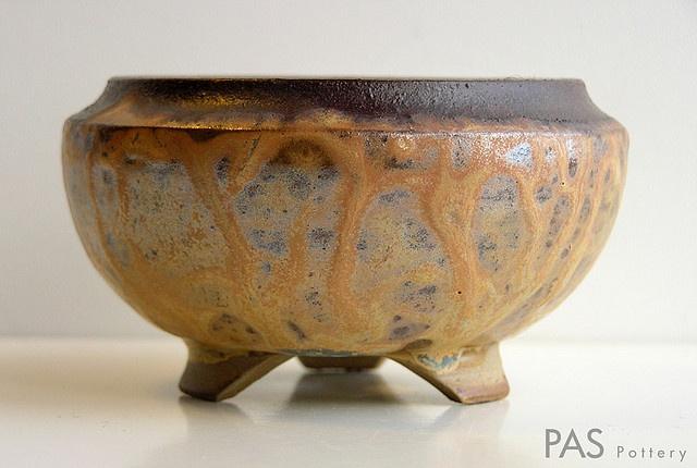 Bonsai Pot: S45-PAS Pottery - a nice drippy salt glaze on this one. I love salt glazes.