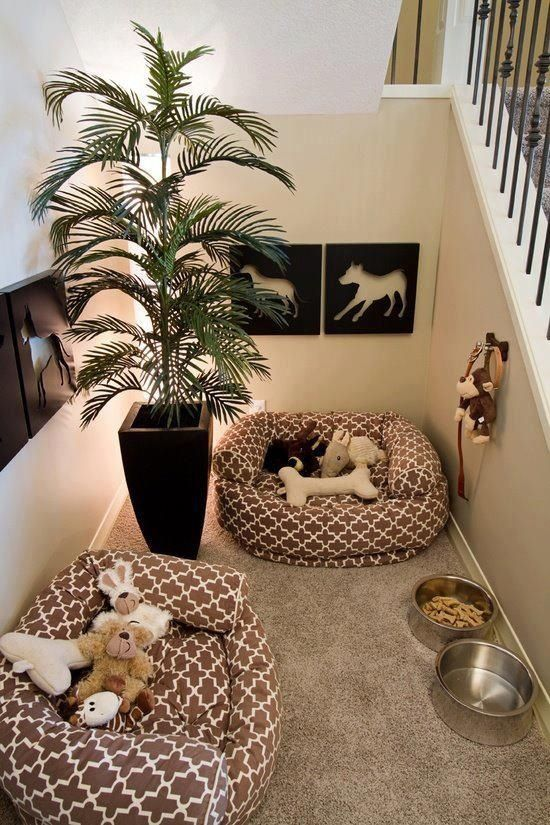 Creative fancy spot for the dogs in the home