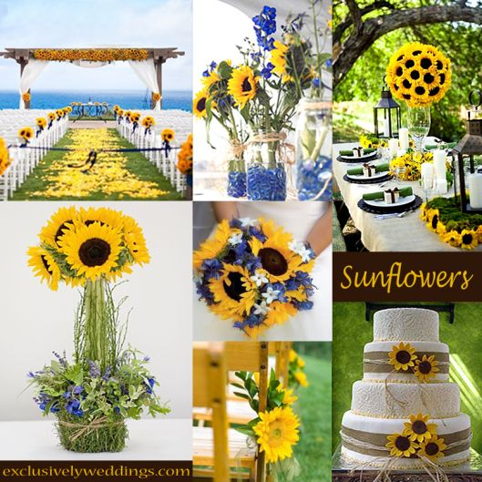 sunflower and blue wedding ideas - Google Search