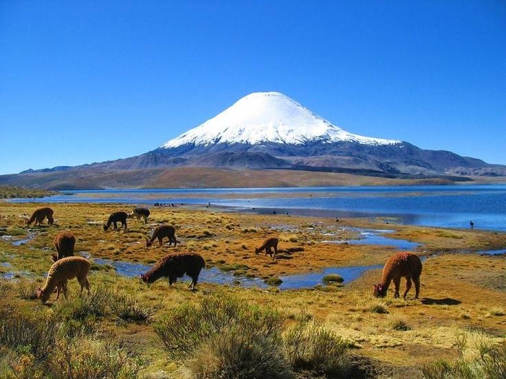 Chungará Lake, Chile