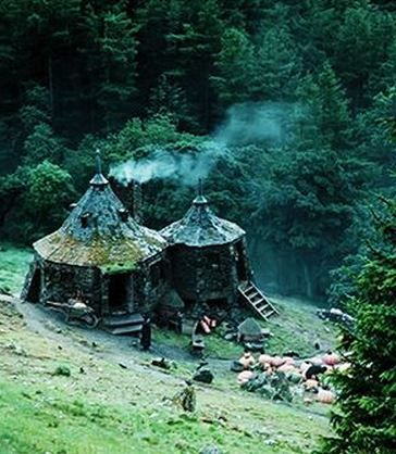 I would love living in Hagrid's hut. Assuming, of course, I had internet and a grocery near by.