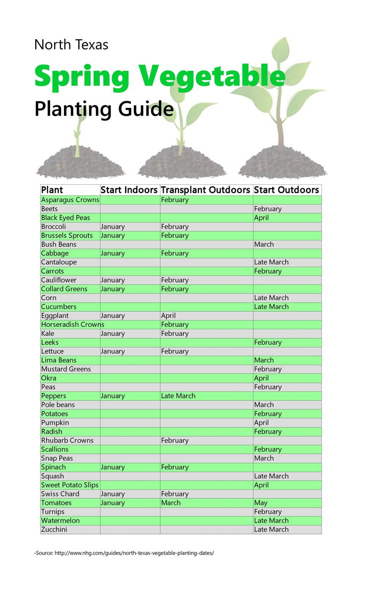 Best 25 vegetable planting guide ideas on pinterest - Spacing planting vegetables guide ...