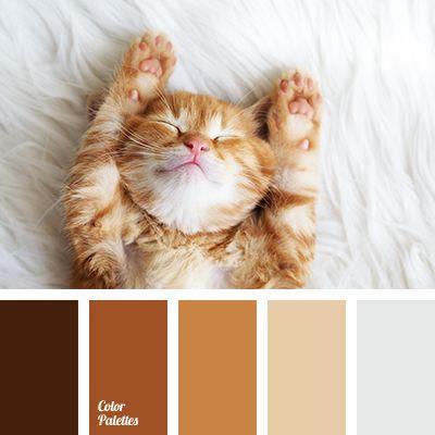 Color Palette #2927