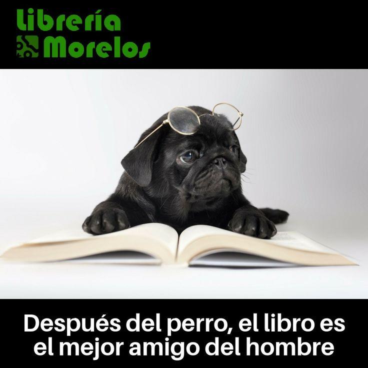 Después del perro, el libro es el mejor amigo del hombre