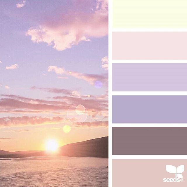 today's inspiration image for { color heaven } is by @arctic_stories ... thank you, Renate, for another wonderful #SeedsColor image share!