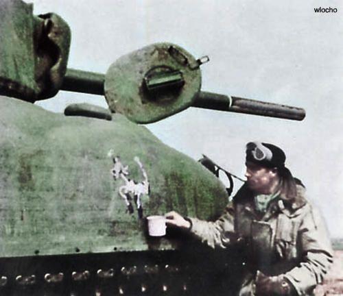 Polish Sherman