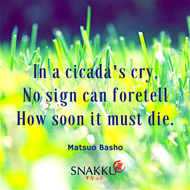 Japanese Haiku Poem by Matsuo Basho on the fragility of life.
