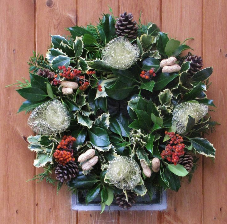 Fresh holly wreaths for sale at Hostas & Garden, This one contains dried berries, cones, whole peanuts in shell.