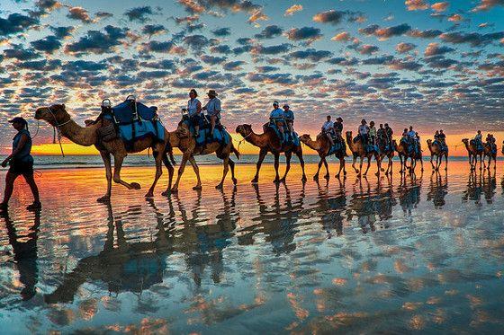 CableBeach AUS  オーストラリア大陸の北西部に位置する町ブルームにある美しいビーチ。ラクダに乗りながらインド洋に沈む夕陽を眺めるキャメルライドは、このビーチで最も人気のアトラクションのひとつ。