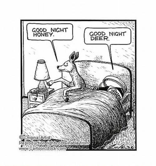 Good night Honey  Good night Deer :)