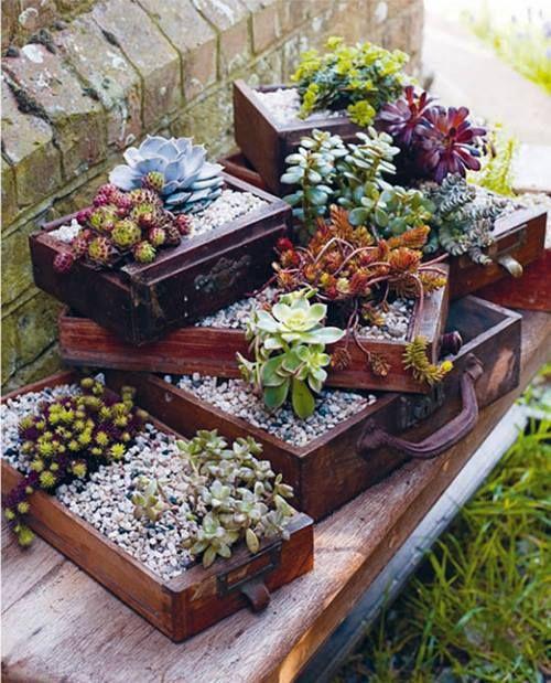 for a small garden