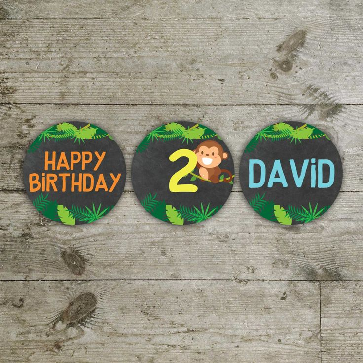 zoo cupcake toppers, printable cupcake toppers by DiPics on Etsy