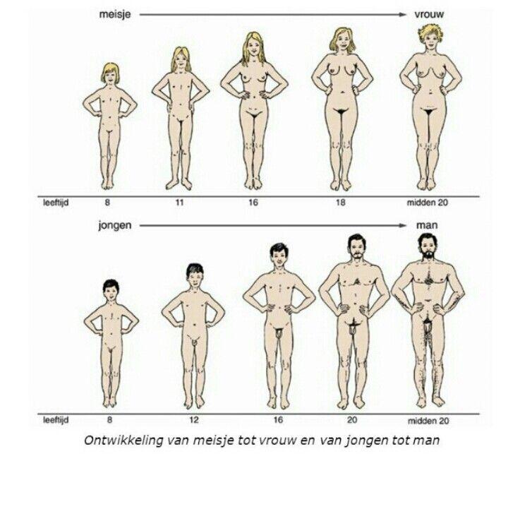 Tijdens de puberteit groeit je lichaam ook op biologische vlakken. Op deze foto zie je de evolutie van meisje naar vrouw en van jongen naar man