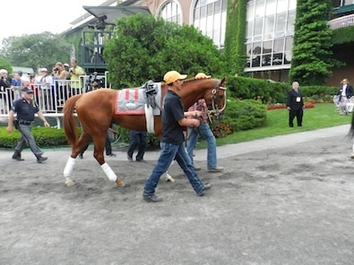 I'll Have Another makes his last trip to the winner's circle at Belmont Park for his retirement ceremony.