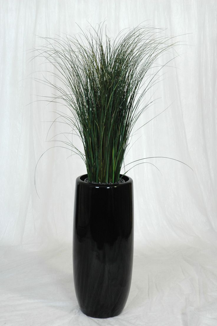 Mummie Grass With Calisto Planter By Nieuwkoop Europe