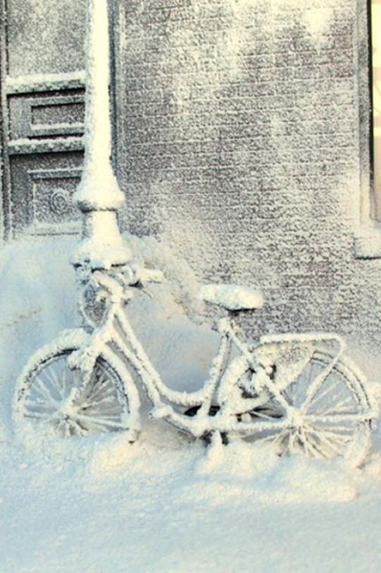 bike in winter. I like the beautiful sight of snow but don't really miss it. ;)