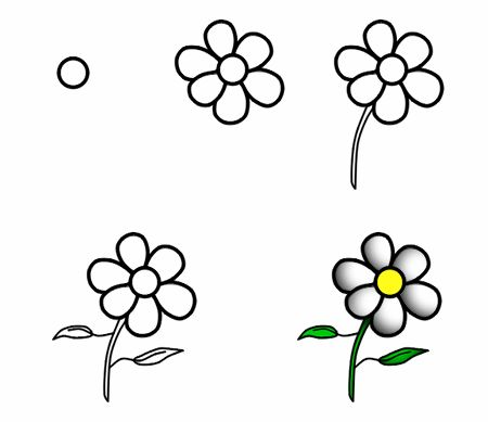 Flowers are always fun and easy to draw! :)