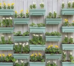 Resultado de imagen para muros con plantas colgantes