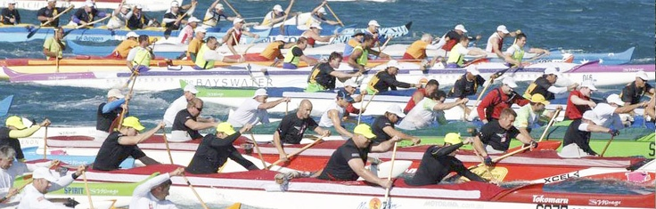 Race Schedule | Gatorade Clash of the Paddles | Hamilton Island