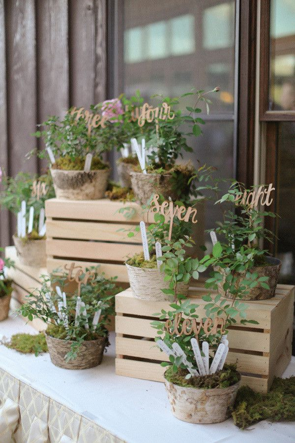 Plant your escort cards into moss covered pots with this lovely botanical seating chart. Hand the plants out to your relatives after the reception. @myweddingdotcom