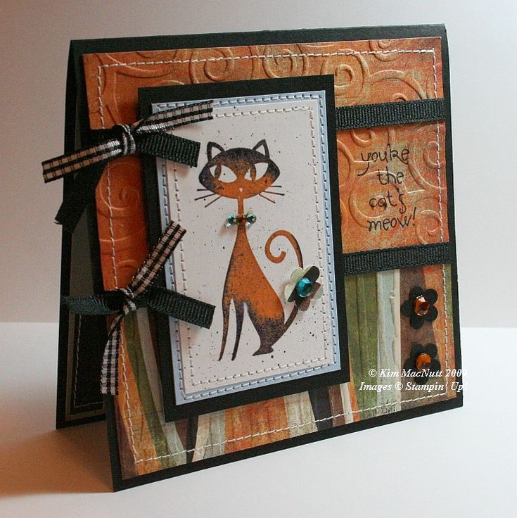 Stampin Up! Cool Cat
