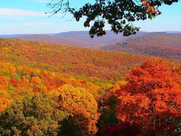 Artist point, Boston Mountains, Arkansas Autumn