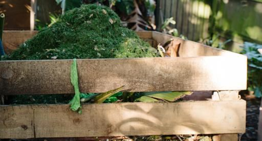 Healthy conditioned soil is essential to get the most from your plants. Making your own compost is simple and a great way to transform household greenwaste and garden waste into a soil conditioner that adds nutrient rich organic matter to replenish your soil. Use compost throughout your garden for healthy plant growth!