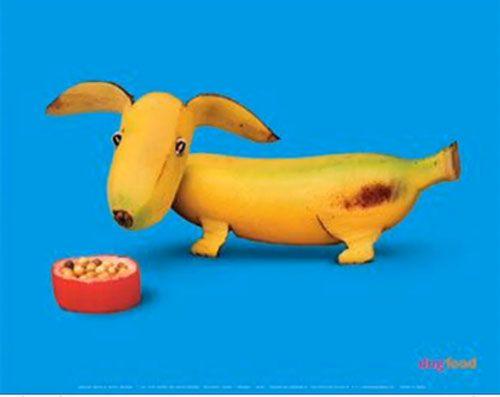 Figuras de animales hechas con frutas y verduras | Manualidades ...