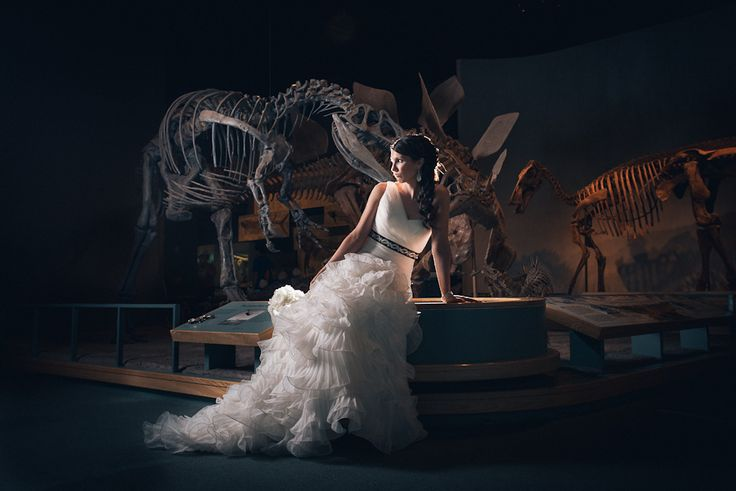 museum of nature wedding photos with dinosaurs - Google Search