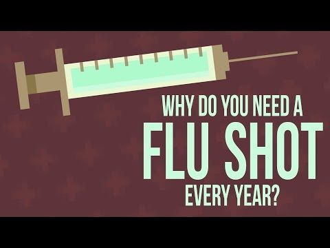 Why do you need to get a flu shot every year? - Melvin | TED-Ed