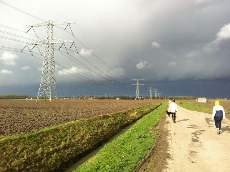 Polderlandschap in de Hoeksche Waard
