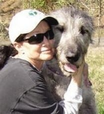 Jake, Irish Wolfhound, in Gold Hill who will receive Oregon's Dog Hero of the Year award for bringing help to his injured owner.