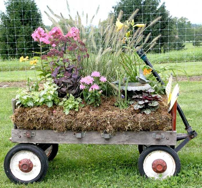 FunPlants Can, Gardens Ideas, Garden Ideas, Potted Plants, Cool Ideas, Flower Beds, Hay Bale, Old Wagons, Miniatures Gardens