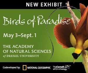 Deal: $2 Off Admission to Academy of Natural Sciences of Drexel University | Frugal Philly Mom Blog