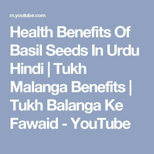 Health Benefits Of Basil Seeds In Urdu Hindi | Tukh Malanga Benefits | Tukh Balanga Ke Fawaid - YouTube